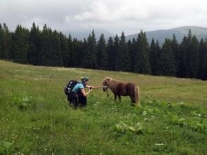 (01) Cabana Susai - eu si poneiul