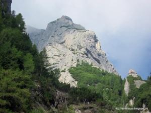 (016) Urcand spre ref. Costila - creasta Costila Galbinele