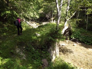 (03) Mergand pe drumul forestier Vanturis - eu pe al 2-lea pod